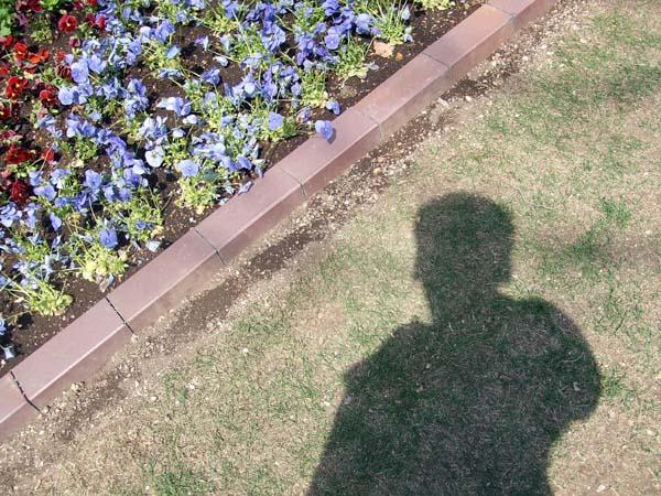 HAM\'s Spring Photo Album 03