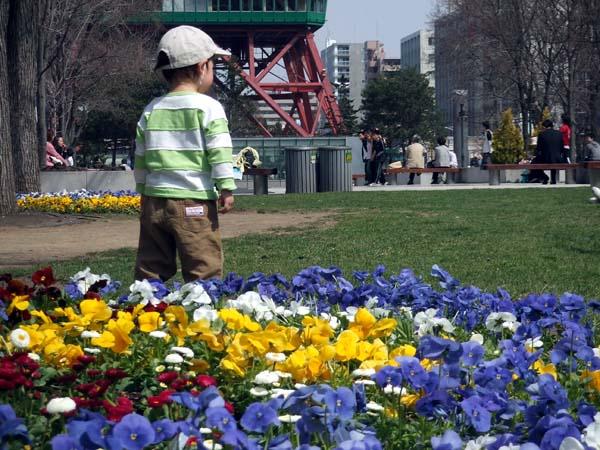 HAM\'s Spring Photo Album 11